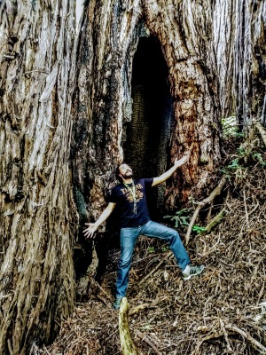El bosque manda.